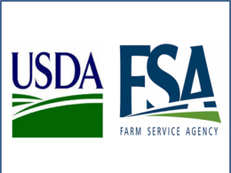 U S D A and Farm Service Agency Logos